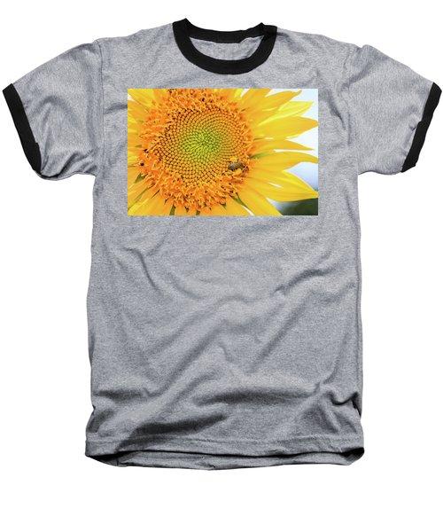 Bumble Bee With Pollen Sacs Baseball T-Shirt