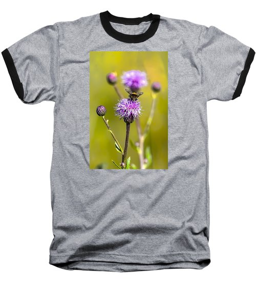Baseball T-Shirt featuring the photograph Bumblebee Aug 2015 by Leif Sohlman