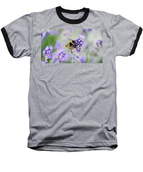 Bumblebee Baseball T-Shirt