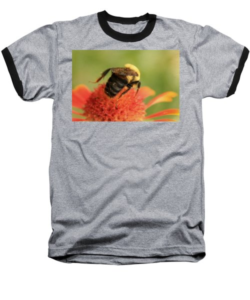 Baseball T-Shirt featuring the photograph Bumblebee by Chris Berry