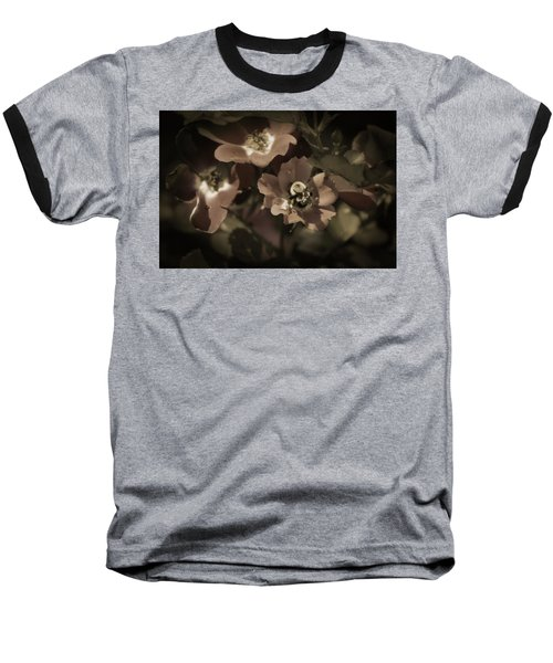 Bumblebee On Blush Country Rose In Sepia Tones Baseball T-Shirt