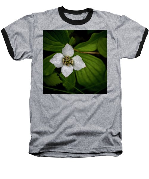 Baseball T-Shirt featuring the photograph Bunchberry Dogwood On Gloomy Day by Darcy Michaelchuk