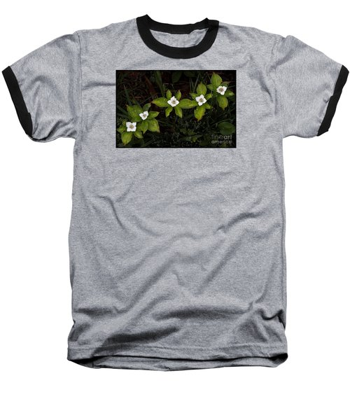 Bunchberry Flowers Baseball T-Shirt