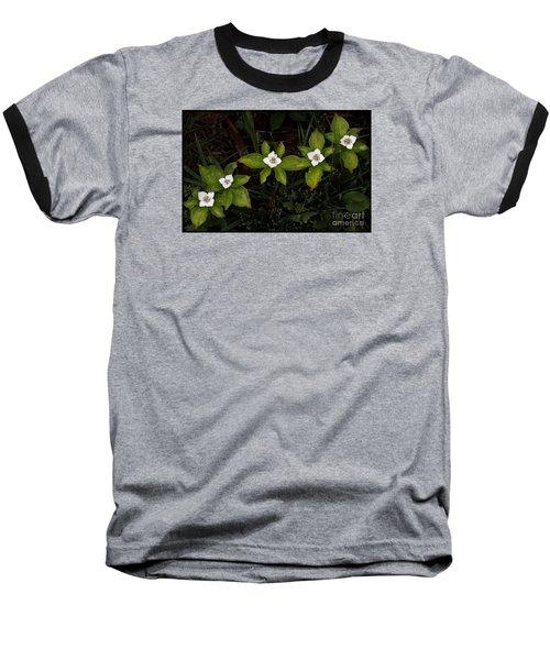 Bunchberry Flowers Baseball T-Shirt