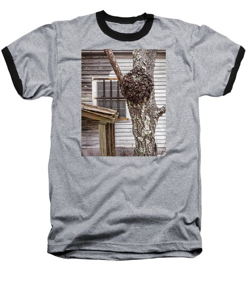 Burl And Window Baseball T-Shirt