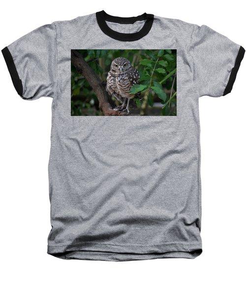 Burrowing Owl Color Version Baseball T-Shirt