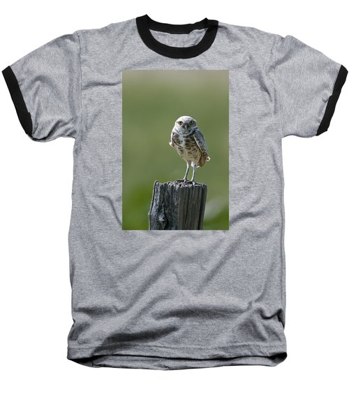 Baseball T-Shirt featuring the photograph Burrowing Owl by Gary Lengyel