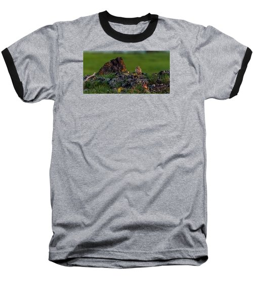Baseball T-Shirt featuring the photograph Burrowing Owl In Cactus #1 by Yeates Photography