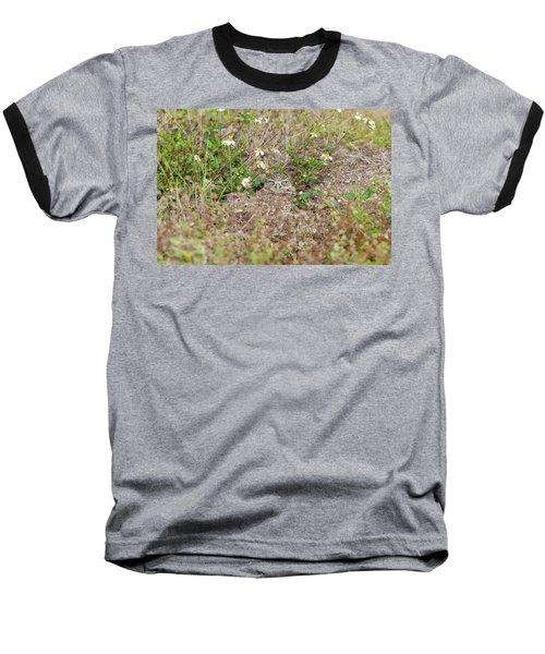 Burrowing Owl Outside His Home Baseball T-Shirt