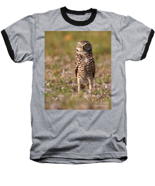 Burrowing Owl Standing Tall Baseball T-Shirt by Myrna Bradshaw