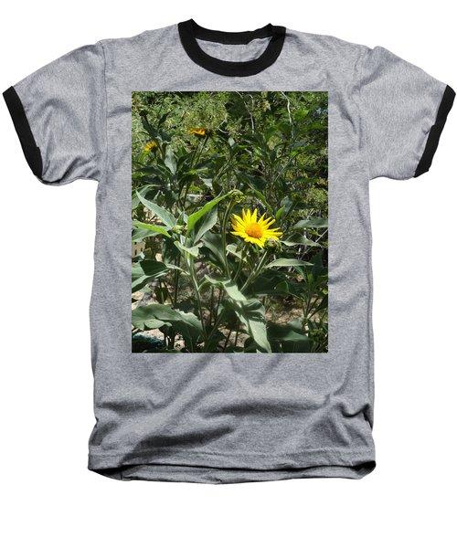 Burst Of Sun Flower Baseball T-Shirt