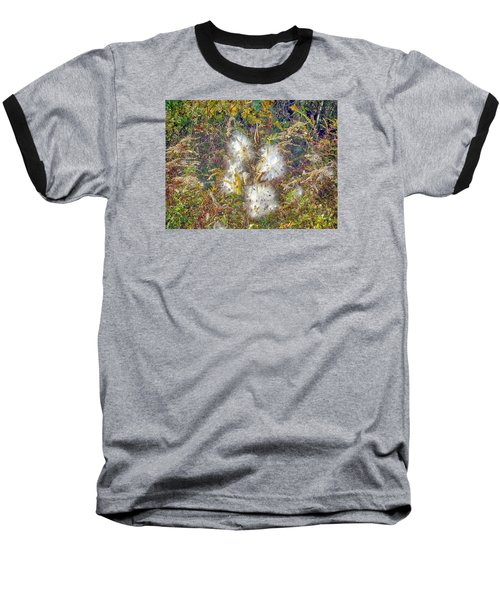 Bursting Milkweed Seed Pods Baseball T-Shirt by Constantine Gregory