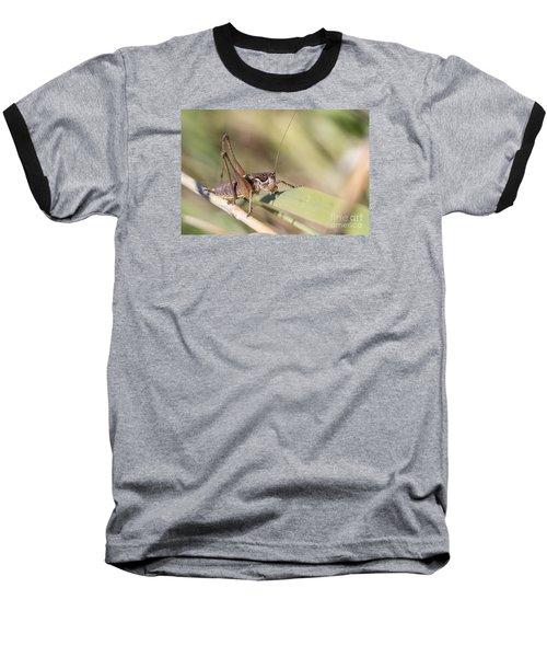 Baseball T-Shirt featuring the photograph Bush Cricket by Jivko Nakev