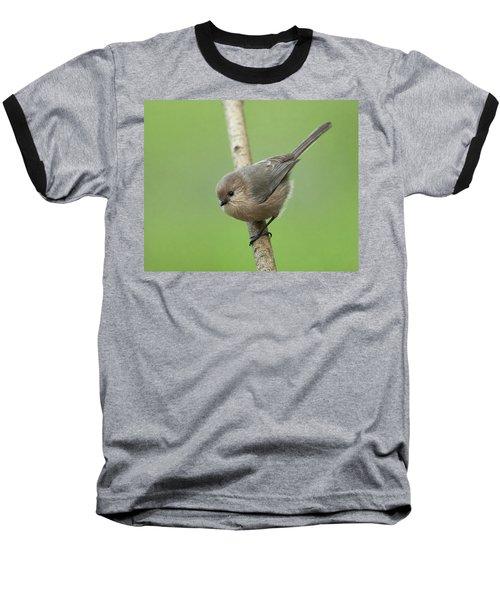 Bushtit Baseball T-Shirt