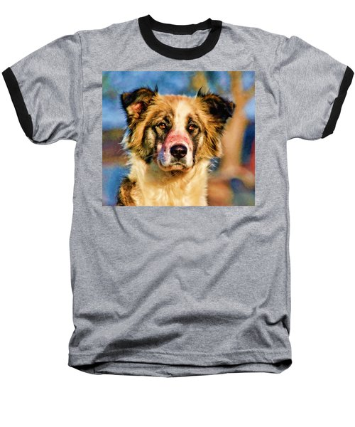 Buster Dog Viewing The Sunset Baseball T-Shirt by Lucky Chen
