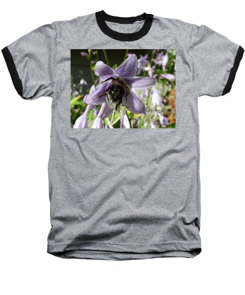 Busy Bee Baseball T-Shirt