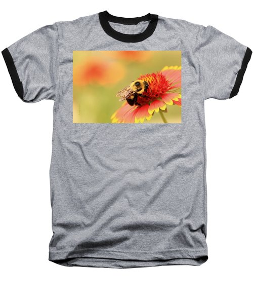 Baseball T-Shirt featuring the photograph Busy Bumblebee by Chris Berry