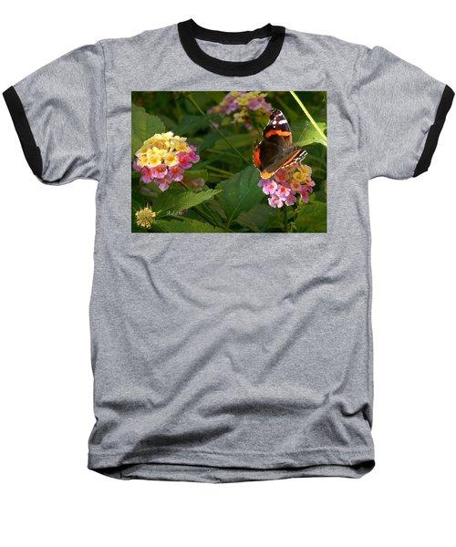Busy Butterfly Side 1 Baseball T-Shirt by Felipe Adan Lerma