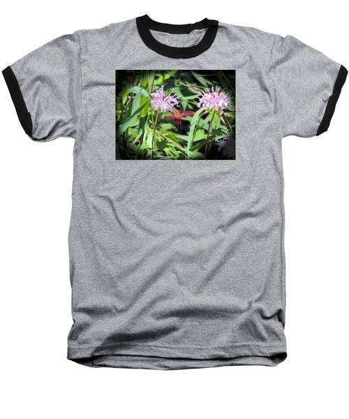 Baseball T-Shirt featuring the photograph Busy Hummingbird Moth by Teresa Schomig