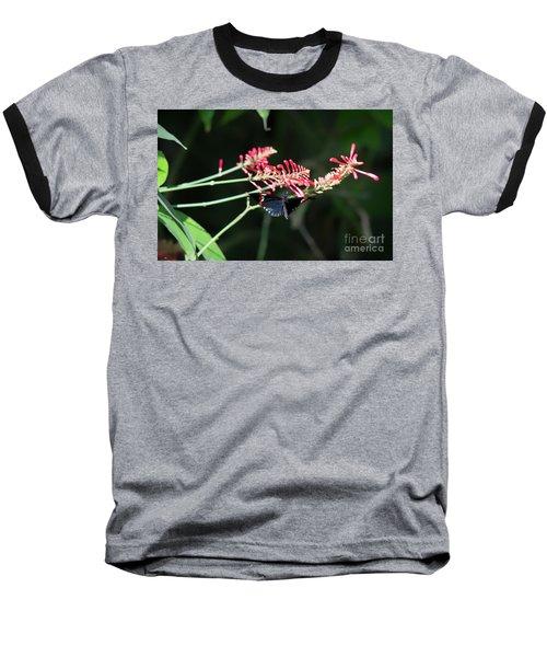 Butterfly In Flight Baseball T-Shirt