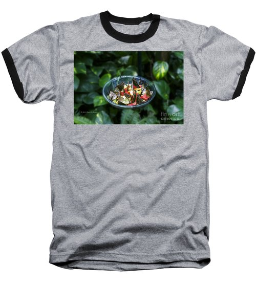 Butterflies Feeding Baseball T-Shirt