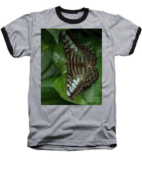 Butterfly 4 Baseball T-Shirt