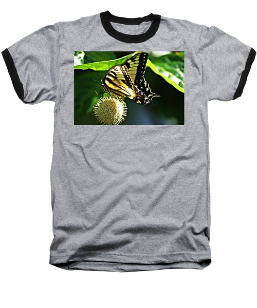 Butterfly 4 Baseball T-Shirt by Joe Faherty