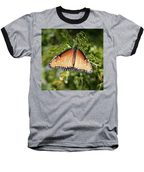 Butterfly 6 Baseball T-Shirt