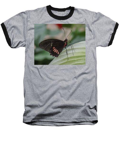 Butterfly 7 Baseball T-Shirt