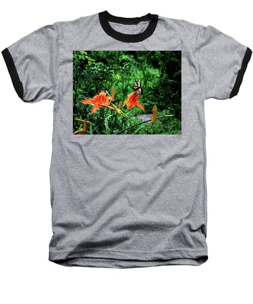 Butterfly And Canna Lilies Baseball T-Shirt by Cathy Harper