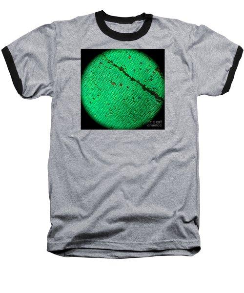 Butterfly Armor Baseball T-Shirt by KD Johnson