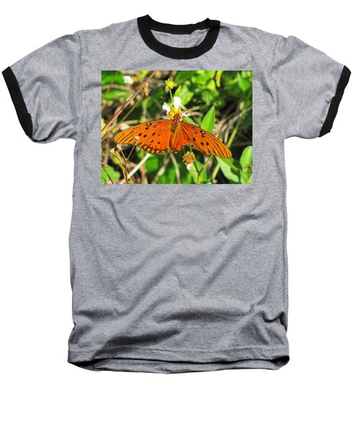 Butterfly At Canaveral National Seashore Baseball T-Shirt