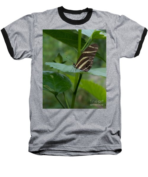 Butterfly 2 Baseball T-Shirt