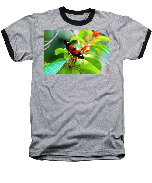 Baseball T-Shirt featuring the photograph Butterfly  by David Morefield