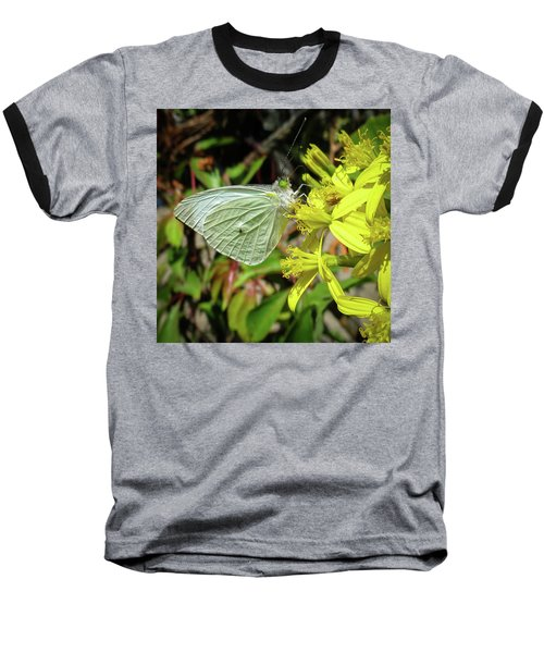 Butterfly Feasting On Yellow Flowers Baseball T-Shirt