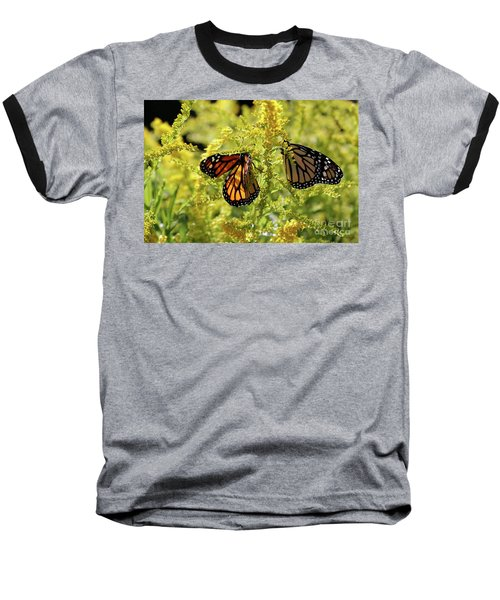 Butterfly In Fall  Baseball T-Shirt