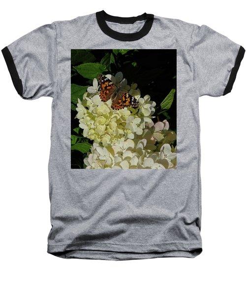 Butterfly On Hydrangea Baseball T-Shirt