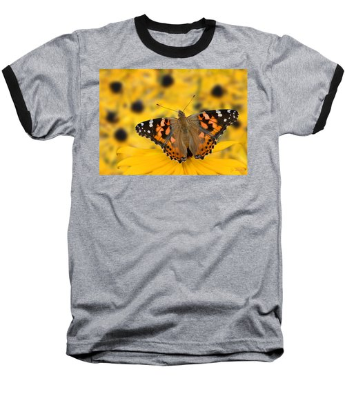 Butterfly On Rudbeckia Baseball T-Shirt by Joe Bonita