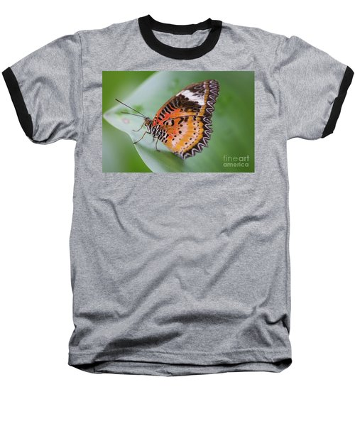 Butterfly On The Edge Of Leaf Baseball T-Shirt