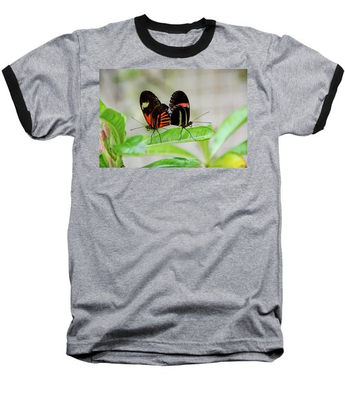 Butterfly Pair Baseball T-Shirt