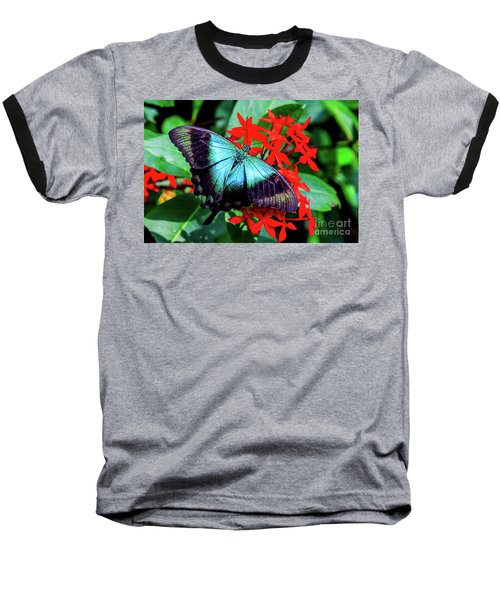 Baseball T-Shirt featuring the photograph Butterfly by Ray Shiu