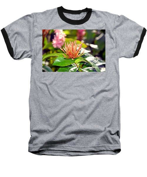 Butterfly Snack Baseball T-Shirt