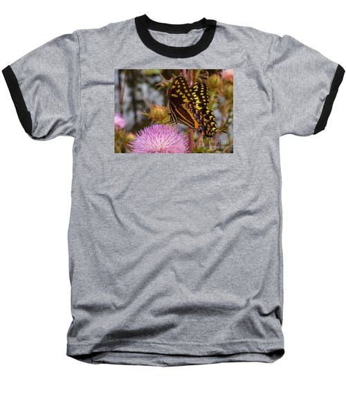 Butterfly Visit Baseball T-Shirt by Tom Claud