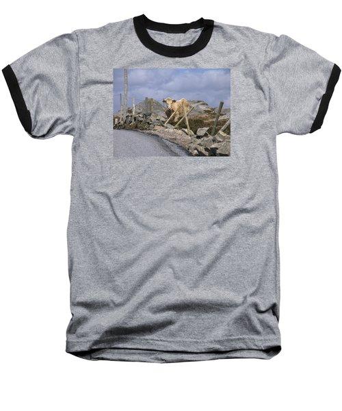 Butterscotch Baseball T-Shirt