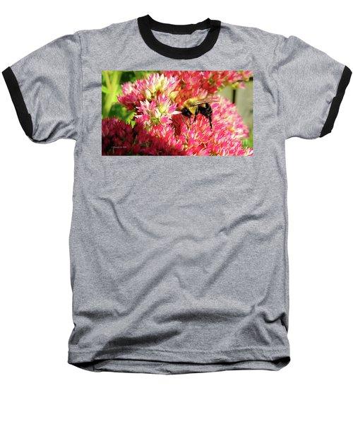 Buzy Bee Baseball T-Shirt