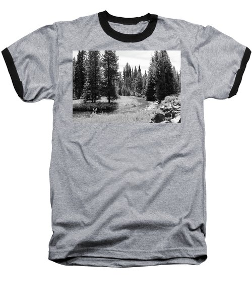 By The Stream Baseball T-Shirt by Christin Brodie