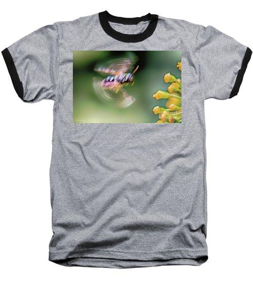 Bzzzzzzzz Baseball T-Shirt by Jivko Nakev
