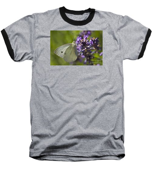 Baseball T-Shirt featuring the photograph Cabbage White Butterfly by Inge Riis McDonald