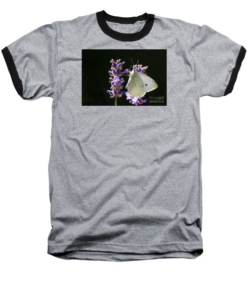 Baseball T-Shirt featuring the photograph Cabbage White Butterfly On Lavender by Inge Riis McDonald
