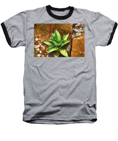 Cacti Moods In Technicolor Baseball T-Shirt by Terry Cork